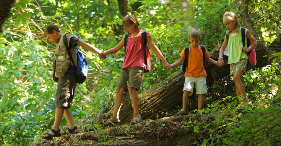 Niños caminando de la mano sobre un tronco